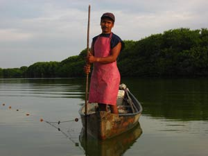 Fisherman in Pastoria